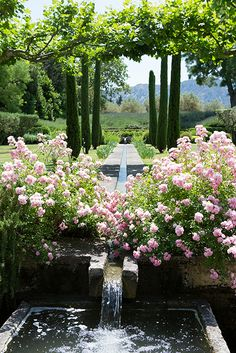 Mas de Berard in Provence, Vicki Archer. Carla Coulson Photographer