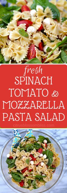 Fresh spinach, tomato and mozzarella pasta salad, a wonderfully flavorful hybrid between a classic spinach salad and a lightly dressed summertime pasta salad.