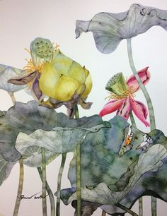 27 Ideas For Flowers Drawing Loto Nature Illustration, Botanical Illustration, Watercolor Flowers, Watercolor Paintings, Drawing Flowers, Watercolors, Lotus Art, Encaustic Art, Chinese Painting