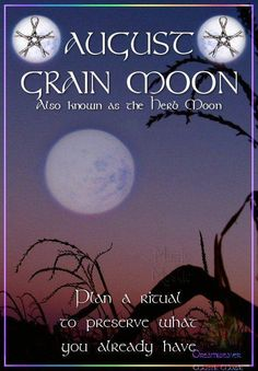 Polished Darkness: Moon Phases {Part August's Grain Moon with Ritual suggestions. Magic Spells, Easy Spells, Moon Magic, Beautiful Moon, Practical Magic, Sabbats, New Moon, Moon Phases, Book Of Shadows