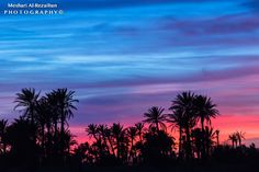 The Palm's City by Meshari Al-Rezaihan on 500px