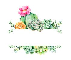 Colorful floral frame with leaves,succulent plant,branches and cactus.World of succulents and cactus Succulents Wallpaper, Succulents Drawing, Cacti And Succulents, Planting Succulents, Cactus Wallpaper, Flower Wallpaper, Succulent Tattoo, Succulent Frame, Cactus Tattoo