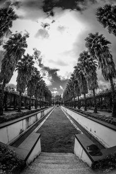 Parque escénico ,Jerez de la Fra.