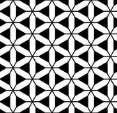 Vector modern seamless geometry pattern flower of life, black and white abstract geometric background, pillow print, monochrome retro texture, hipster fashion design — Stock Illustration #92253268