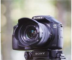 sony a3000 best affordable mirrorless camera under 300