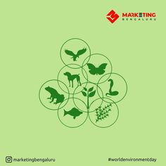 With many species becoming extinct, it is the high time we focus on biodiversity. This environment let's celebrate biodiversity and save our planet #worldenvironmentday #MarketingBangalore #marketingbengaluru #environment World Environment Day, Extinct, Digital Marketing Services, Lets Celebrate, Our Planet
