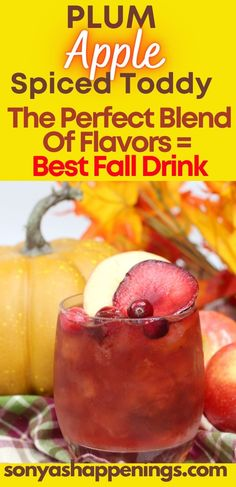 Check out this drink recipe for plum apple spice cider cold toddy. It is a perfect blend of flavors for the fall season. - mixed drinks - cocktails - home bartender - iced toddy - drink recipe -