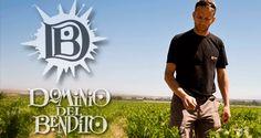 entrevista a Antony Terryn Dominio del Bendito