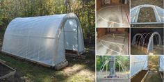 How to Easily Build a $50 Greenhouse – Free Plans