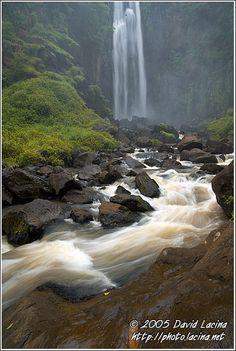 Africa |  River at Thompson Falls, Kenya.  Photo Credit:  David Lucina.