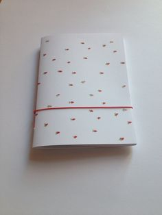 """strawberry"" notebook - all@uia"