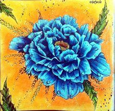 Instagram media katsacho - @kubikowska.emilysmoose #blueflowers #podrugiejstroniesnu #pdss #kredki #kohinoor #mondeluz #suchepastele #drypastel #masterpastel #kolorowanka #kolorowanka #kolorowamafia #kolorowankidladorosłych #colouringbook #colouring #coloring #colouringforadults #coloredpencils #colouredpencils #artherapy #bayan_boyan #nossa_vida_colorida #vemcolorir #divasdasartes