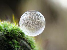 IDEE: gefrorene Seifenblasen: Seifenblasen im Sommer kennt jeder. Im Winter kann man sie einfrieren und zaubert wunderschöne Muster. #Seifenblase