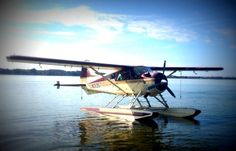 Take a ride in a legendary BEAVER bush plane. See the area from a whole new perspective. Float Plane, Plane Ride, Bush Pilot, Bush Plane, Small Town America, Flying Boat, New Perspective, Aerial View, Day Trip