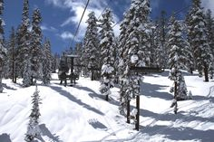 The snow has started to fall! Find out if your favorite Tahoe ski resort is opening soon.