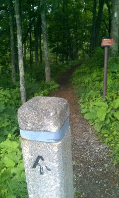 Appalachian Trail in Virginia.  Love this trail.  There is a section nearby to me, here in Pennsylvania.