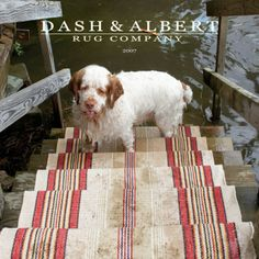 Daisy Mae 2001–2014: Our Bestest Girl. This first Dash & Albert catalog cover featured a very damp Daisy. This image prompted our saying that Daisy was the epitome of modern femininity.