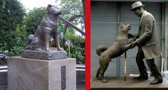 Remember the Hachi movie about the dog that waited every day for more than 9 years in front of the train station for his master to return from work? They finally put up a new statue that shows both the dog and his owner!
