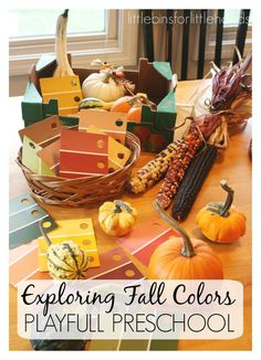 Exploring Fall Colors With Gourds Preschool Fall Activity
