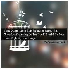 489 Best Shayari Images Quote Life Quotes Soft Words