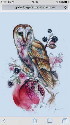 Paco watercolour