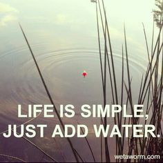 Life is simple, just add water.