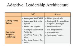 Adaptive leadership - Getting on the balcony