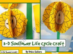 Create a Life Cycle of a Sunflower craft this spring. This craft is perfect for spring and your plant or flower science units. Craft Activities For Kids, Science Activities, Science Ideas, Sequencing Activities, Science Fun, Science Resources, Science Experiments, Preschool Crafts, Kids Crafts