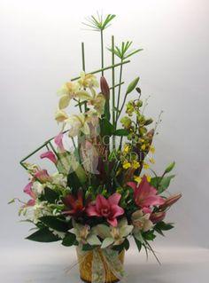 Arreglos de Orquídeas                                                                                                                                                                                 Mais