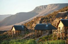 Aquila offers safaris only 2 hours from Cape Town. Why not make a night of it with our awesome deal? Safari Crafts, Self Driving, Spa, Cape Town, African, Cabin, Luxury, House Styles, Travel