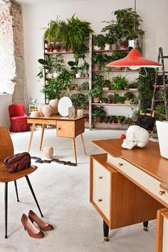Modern Findings/plants & desk