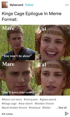Geek Meme, Red Queen Victoria Aveyard, Glass Sword, King Cage, King David, Anakin Skywalker, Book Memes, Narnia, Puns