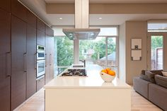 Simplicity Trumps Ornamentation - modern - kitchen - ottawa - Handwerk Interiors