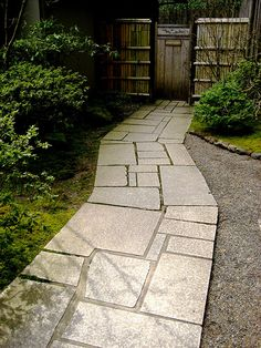 stone path-kind of like a midcentury modern abstract -nice!