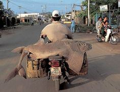 vietnam, motorbike