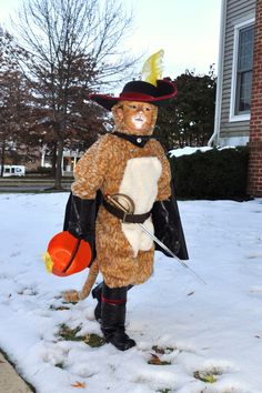Best images about costume idea puss boots