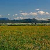 Montana Working Ranch - Bing Images