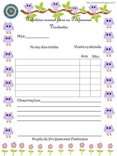 Relatório mensal para as Professoras Visitantes
