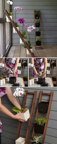 indoor garden projects 20 Top 24 Awesome Ideas to Display Your Indoor Mini Garden Diy Garden, Garden Projects, Garden Plants, Garden Landscaping, Indoor Plants, Home And Garden, Garden Ideas, Wood Projects, Patio Ideas