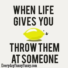 Google Image Result for http://everydayfunnyfunny.com/wp-content/uploads/2010/08/when-life-gives-you-throw-them-at-someone.jpg