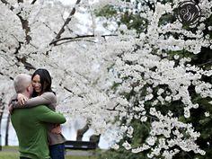 Engagement photos, cherry blossoms.