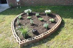 Project done by Aktion Club at the Arc of High Point High Point, Plants, Action, Plant, Planting, Planets