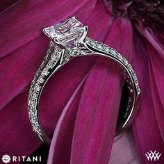 Ritani Classic Split Shank Diamond Engagement Ring for Princess Cut Diamonds
