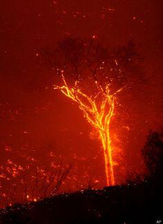 'Fire Devil' Near Alice Springs, Australia, Caught On Film