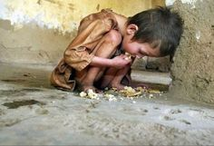 Six million children die of hunger every year. In a world full of waste and  gluttony - why is there starvation?