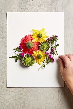 Turn Fresh Blooms into Art with DIY Pounded Flowers You've never gifted flowers quite like this before! Pot Mason Diy, Mason Jar Crafts, Simple Flowers, Diy Flowers, Fresh Flowers, Bright Flowers, Beautiful Flowers, Drying Flowers, Flower Pots