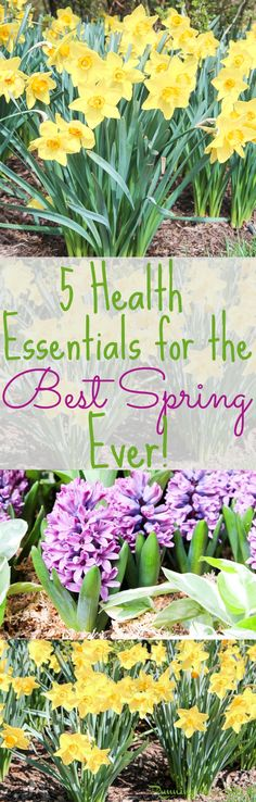 5 Essentials for a Healthy Spring!  Tips, motivation and ideas for spring health and products to stay allergy free and happy this year. / Running in a Skirt  SensimistatCVS BeGreater AD