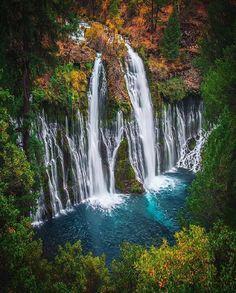 : @shainblumphotography Thanks for the water #elniño #burneyfalls  #rawcalifornia by rawcalifornia
