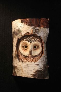 Wildlife Wood Bird Carving Owl Art - This inquisitive owl peeking from her nest is hand carved and then painted with acrylics. I use glass eyes set with epoxy clay to provide a more realistic touch. I want to give each owl their own personality and hopefully add a bit of whimsy and nature to your home. - The carving is approx 10H X 6L X 4 D - Sealed with a protective urethane - Has a slot carved in the back so it hangs flat against the wall - Custom orders are accepted, please contact me...