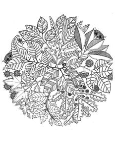 Free coloring page «coloring-adult-flowers-vegatation-mandala».  A mandala both animal and vegetable, in any event promising a relaxing time coloring